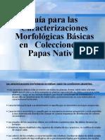 DESCRIPTOR DE PAPAS 2016