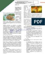 LITERATURA PRECO8