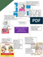 probioticos, prebioticos y simbioticos en gastroenterologia