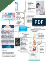 microbiota intestinal y enfermedades digestivas