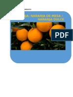 FICHA TECNICA DEL PRODUCTO