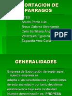 ESPARRAGOS PPT