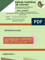 GRUPO 2 NORMA PERU-ECUADOR