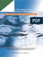 como_medir_el_desempeno_seep_framework.pdf
