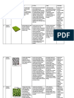 Struktur dan Gambar Jaringan Tumbuhan