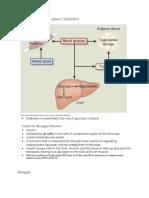 Endocrine Disorders II Albers