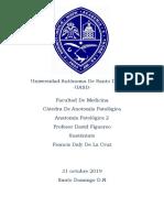 Francis De La Cruz, seccion 05 Patologica 2