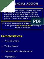 02FUNDAMENTOS DE LA ACTIVIDAD ELECTRICA