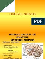 1.sistemul_nervos