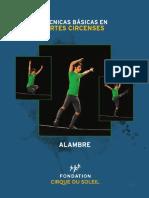 Alambre.pdf
