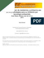 aacIb tesis.pdf
