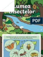 lumea insectelor.ppt