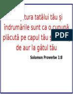 citat plastifiat 9.docx