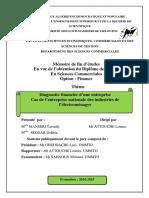 Diagnostic Financier d'Une Entreprise- Cas ENIEM