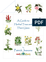 A Guide to Herb Teas and their Uses