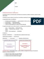 CLASIFICACION BACTERIANA DE MURRAY.pptx
