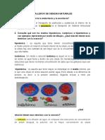ACTIVIDADES DEL TALLER N1 DE CIENCIAS NATURALES