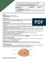 Guía de Biología Ciclo 3.docx