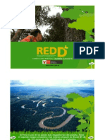 REDD-Presentacion