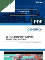 Clase 2. Paulo Flores, La célula procariota y eucariota. funciones de la célula .pdf