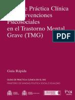 guia practica tmg.pdf