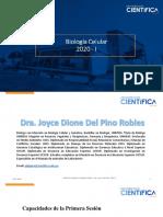 Sesión de bIomoléculas Del Pino.pdf