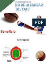 beneficio-el camino de la calidad del cafe