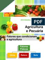 1.Fatores que condicionam a agricultura.pdf