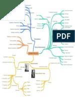 ADMINISTRACION-mapa conceptual.pdf