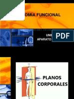 ANATOMIA_FUNCIONAL_-_Unidad_3