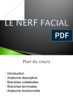 le-nerf-facial