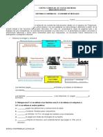 ECONOMÍA DE MERCADO (1).doc