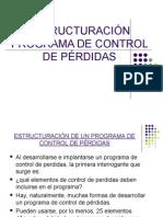 ESTRUCTURACIÓN PROGRAMA DE CONTROL DE PÉRDIDAS 2