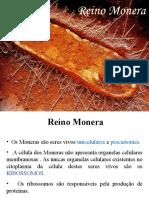 reinomonera-120207185203-phpapp01.pdf