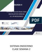 SISTEMA ENDOCRINO CLASE 2 (1).pdf