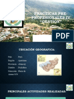 DIAPOSITIVAS  PRACTICAS PRE-PROFESIONALES IV (PICHIRHUA).pptx