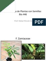 Sistemática de Plantas con Semillas
