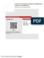 bilancio Rosimm srl.pdf