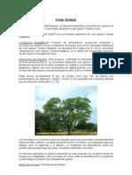 27. Ficha Tecnica Proyecto Forestal-piura