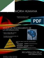 Grupo # 3 Sebastian ROZO MORALES Diana MARCELA DIAZ Psicologia Aprendizaje y Memoria