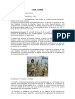 33. FICHA TECNICA Proyecto Peru 1