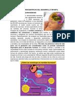 Bases Científicas Del Desarrollo Infantil.