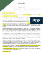 nefrologia (Catedra de Then) (Autoguardado) 2
