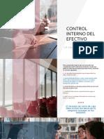 TAREA DE CONTROL INTERNO DEL EFECTIVO(1)