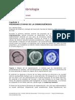 apuntes embriología para Medicina