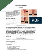 DESGARROS PERINEALES Y CERVICALES.docx