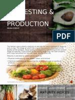 harvesting   post production management