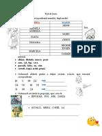 Fișă de lucru-CLR 24,04.docx