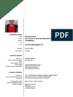 cv_Andreas_Medagliani_format_eu.pdf