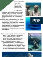 parco mediterraneo.pdf